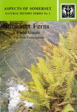 Somerset Ferns a Field Guide by Pat Hill-Cottingham